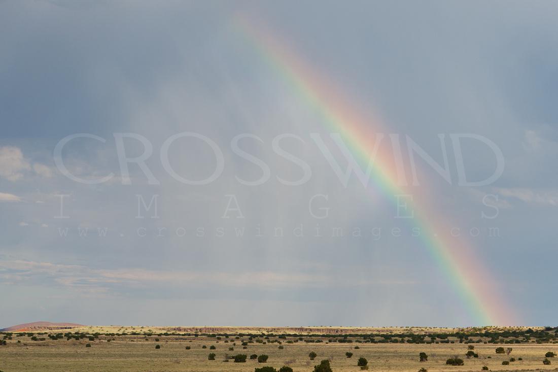 IMAGE: http://crosswindimages.com/img/s8/v14/p279754637-5.jpg