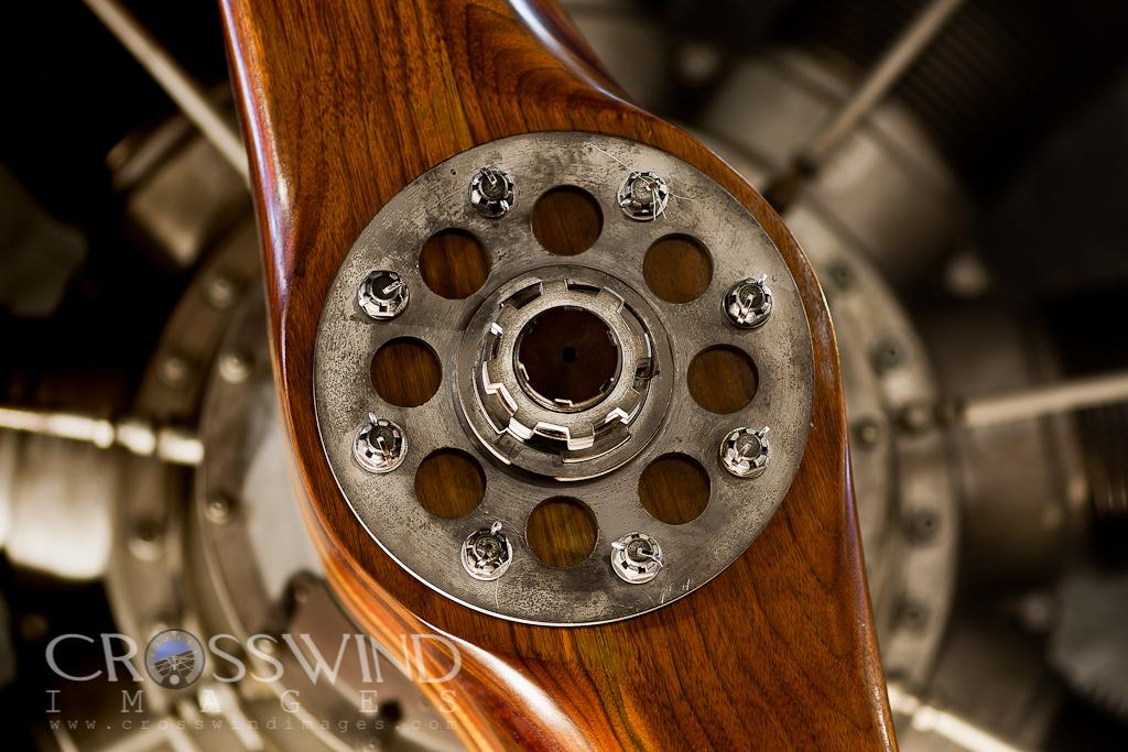 IMAGE: http://crosswindimages.com/img/v24/p257523377.jpg